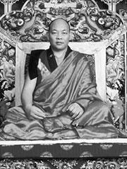 Paltul Rinpoche