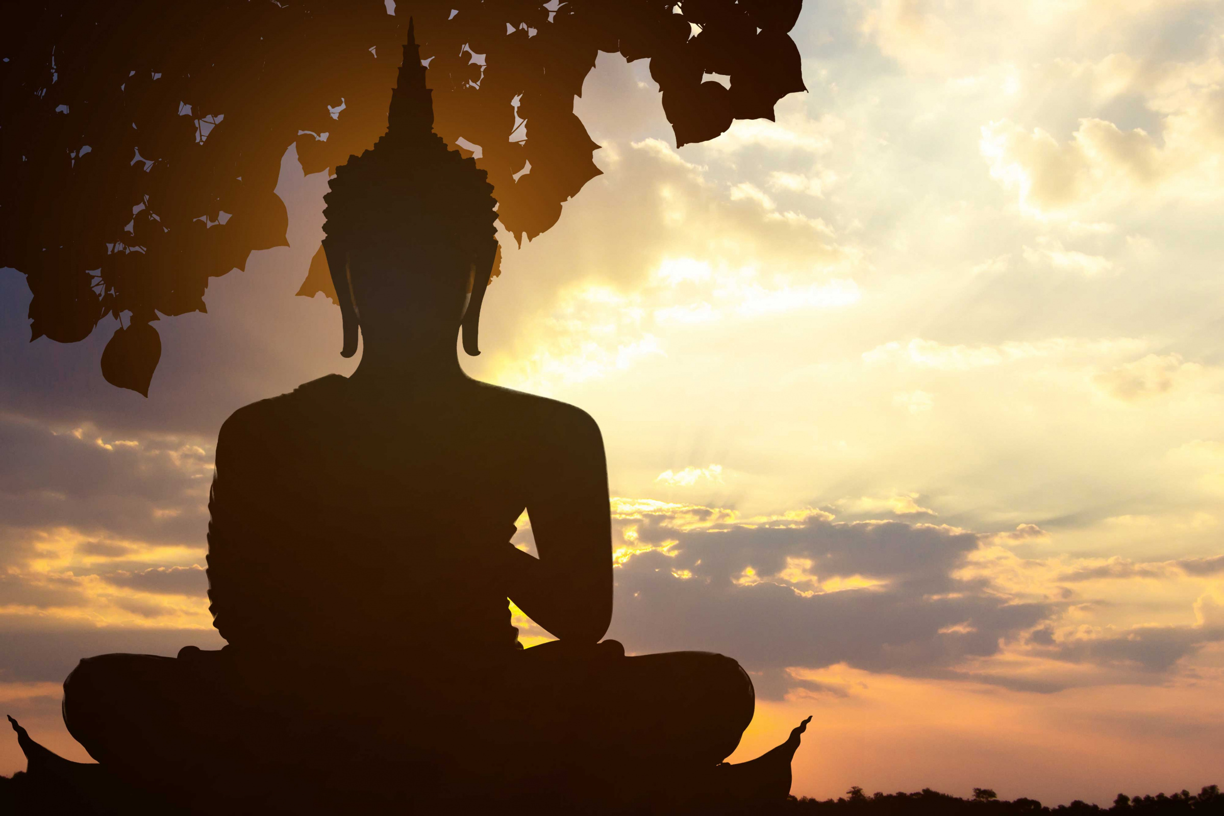 Way Buddhism