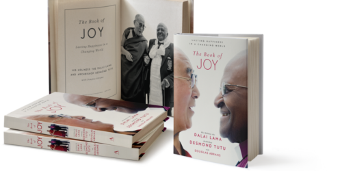 the book of joy 2